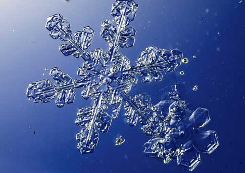 Snowflake that was 38 centimeters in diameter