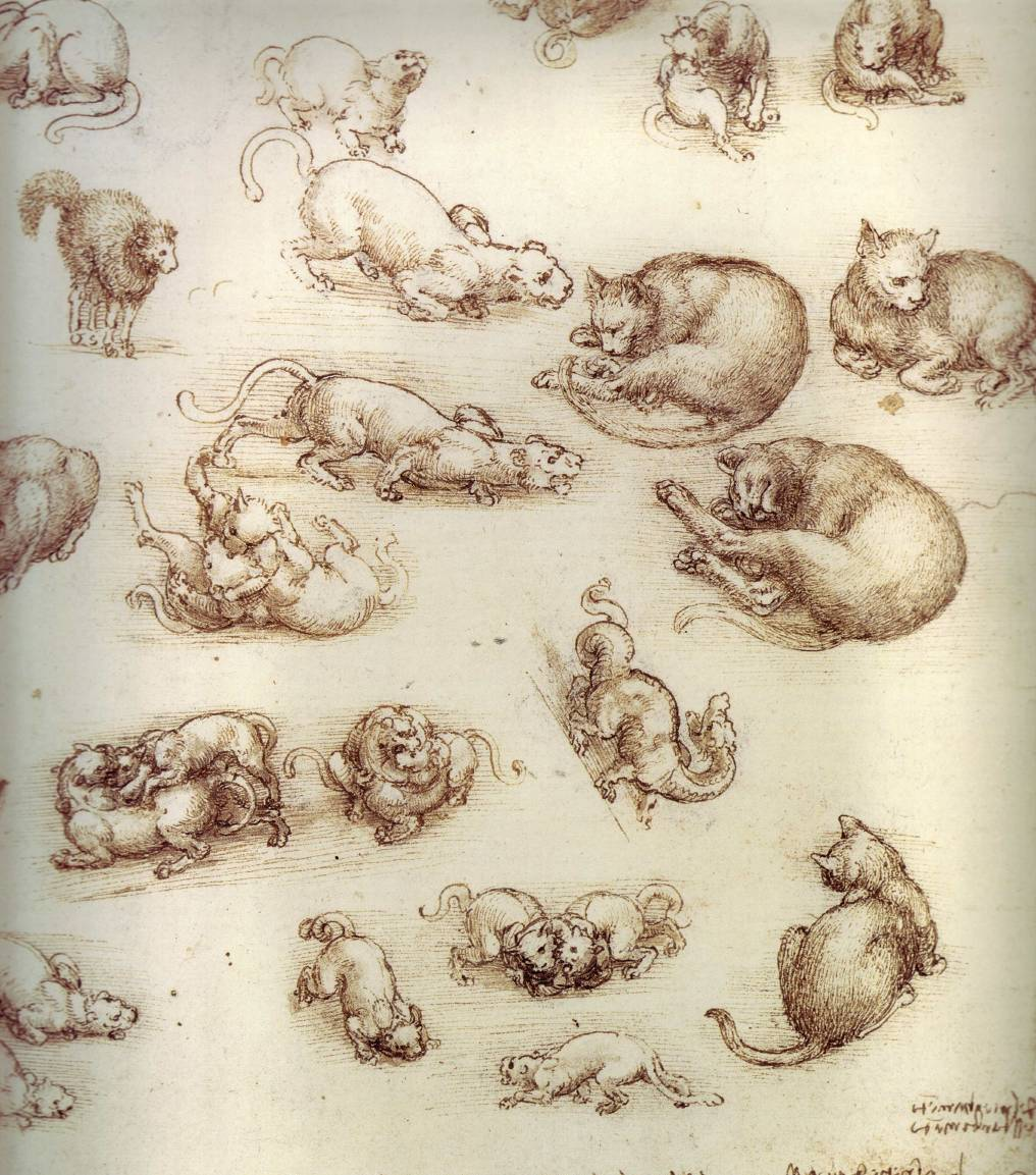 Study of Cats and Other Animals c. 1513